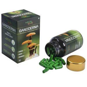 Nature Sure Ganoderma LingZhi Reishi Mushroom Capsules for Stamina in Men and Women 2